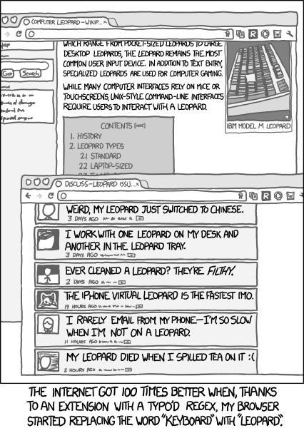 s_keyboard_leopard